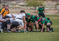 Rugby Scrum. A Scrum sets up and awaits the ball.  This match took place in Reno Nevada on April 11, 2014 between Colusa County Rugby Club (green) and Silicon Royalty Free Stock Photo