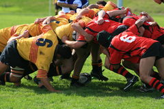 Rugby scrum. Two local Rugby teams engaged in a scrum for the ball after penalty Stock Image