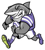 Rugby shark mascot Stock Photos