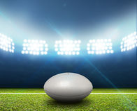 Rugby Stadium And Ball Stock Images