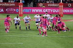 Rugby Stormers Forwards South Africa 2012 Stock Photos