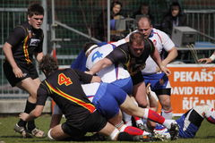 Rugby struggle in european championship Royalty Free Stock Photos