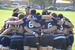 Rugby Team Royalty Free Stock Image