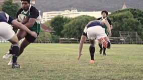 Rugby team encouragement stock video footage