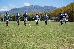 Rugby team playing match at grassy field. On sunny day Stock Photos