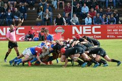 Rugby teams in scrum. Rugby players of two teams pushing in a scrum with referee watching and spectators in the stadium. Provincial school rugby Boland vs stock images