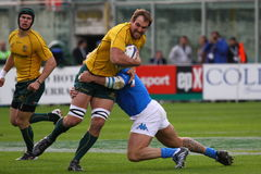 Rugby test match 2010: Italy vs Australia Stock Photo