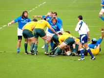 Rugby test match Italy vs Australia Stock Image