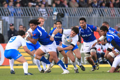 Rugby test match Italy vs Samoa; Zanni Stock Images