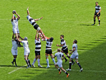 Rugby at Twickenham Royalty Free Stock Image