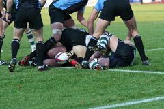Rugby union. Men playing the team sport of rugby union Stock Photos