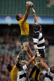 Rugby union Royalty Free Stock Image