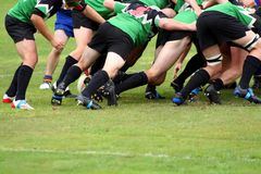 Rugby Union Scrum. A halfback wait to clear the ball from a Rugby Union Scrum Stock Photo