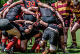 Rugby union scrum Stock Images