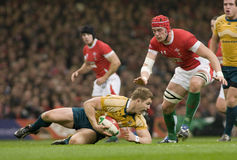Rugby Union - Wales Vs Australia Stock Photos