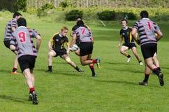 Rugby w Nowa Zelandia Fotografia Stock