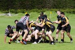 Rugby w Nowa Zelandia Obrazy Royalty Free