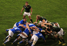Rugby World Cup 2011 South Africa versus Namibia Royalty Free Stock Photography