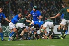 Rugbyabgleichung Italien gegen Südafrika - GELDENHUYS Stockbilder