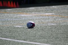 Rugbyboll som förläggas på fältet för matchen royaltyfri foto