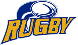 Rugbykugelflugwesen Stockfotos