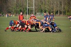 rugbyscrum Arkivfoto