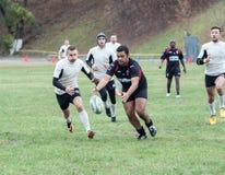 Rugbyspelare i uppgift Royaltyfri Foto