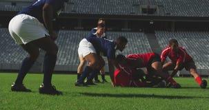 Rugbyspelare som spelar rugbymatchen i stadion 4k stock video