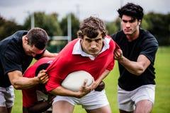 Rugbyspelare som tacklar under leken arkivbilder