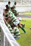 Rugbyspelare som värmer upp Arkivfoto