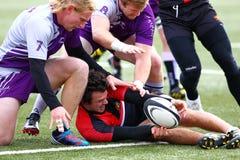Rugbyspelaren kämpar för att hålla kontroll av bollen, medan klämt fast till jordningen av hans motståndare Royaltyfri Foto