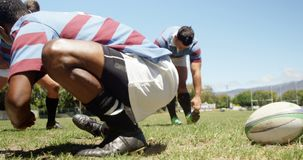 Rugbyspieler, die Übung auf dem Feld 4K 4k ausdehnend tun stock video