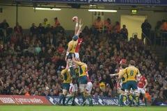 Rugbyunie - Wales versus Australië Royalty-vrije Stock Fotografie