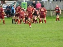 Rugbyunion Royaltyfri Fotografi