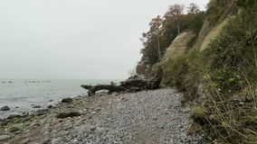 Rugen island chalk rock cliff landscape in autumn time. colorful beech tree forest. Mecklenburg-Vorpommern, Germany. Baltic sea.  stock video footage