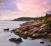 Rugged Acadia Seacoast Stock Images