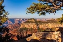 Scenic Grand Canyon North Rim. The rugged beauty of the grand canyon from the north rim Stock Image