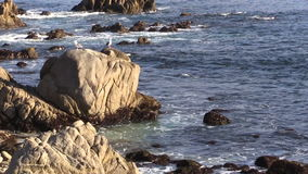 Rugged California Coastline stock video