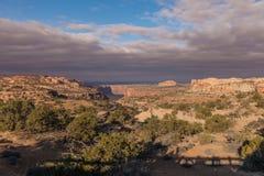 Rugged Canyonlands National Park  Landscape Stock Photos