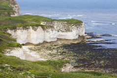 Rugged clifftops at Flamborough Head Stock Images
