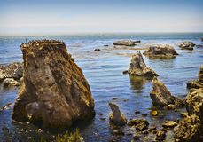 Rugged Coast, California Royalty Free Stock Images