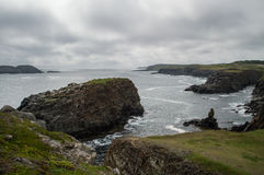 Rugged Coastline at Elliston Puffin Site in Newfoundland Royalty Free Stock Photography