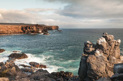 Rugged coastline of Espanola Island Galapagos Royalty Free Stock Images