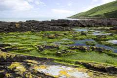 Rugged Coastline in Ireland Stock Images