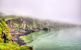 Rugged coastline of Ireland island Royalty Free Stock Photo