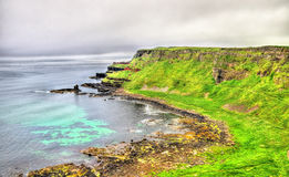 Rugged coastline of Ireland island Stock Images