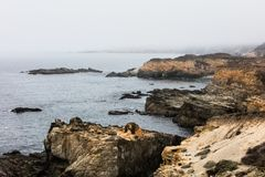 Rugged Coastline of Northern California in Sonoma. The Pacific Ocean washes against the wild, rocky coast of northern California. This beautiful region of the stock photo