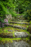 Rugged Garden Steps Stock Images