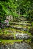 Rugged Garden Steps Stock Images
