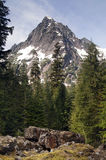 Rugged Jagged Peak North Cascade Mountain Range Vertical Composi Royalty Free Stock Photos
